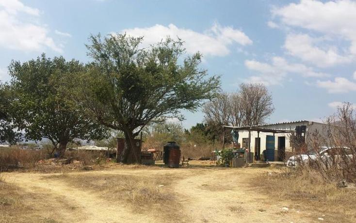 Foto de terreno habitacional en venta en  , san agustin yatareni, san agustín yatareni, oaxaca, 807405 No. 07