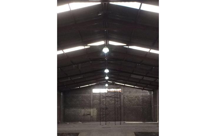 Foto de nave industrial en renta en  , san andrés, guadalajara, jalisco, 1517045 No. 03