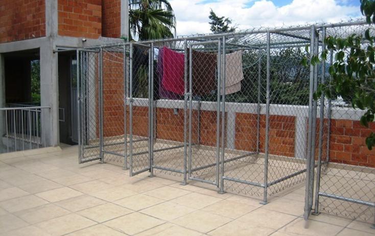 Foto de departamento en renta en san andres , parque san andrés, coyoacán, distrito federal, 2768153 No. 07