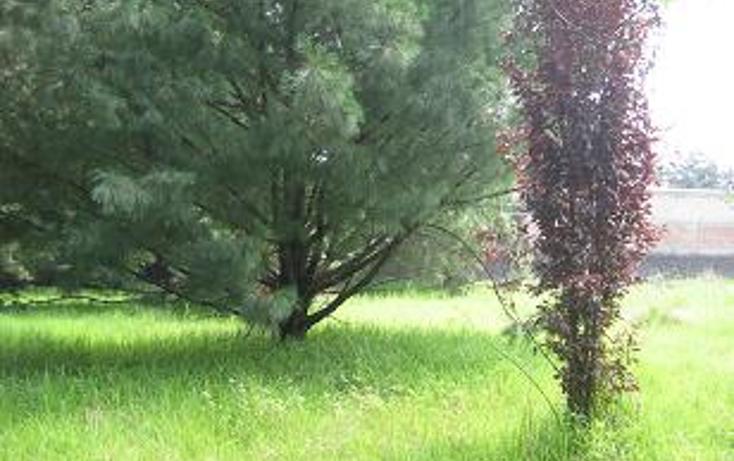 Foto de terreno habitacional en venta en  , san andrés totoltepec, tlalpan, distrito federal, 941923 No. 04