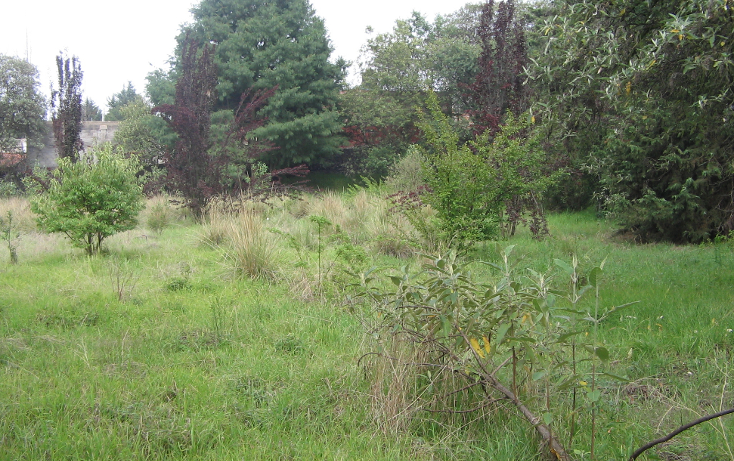 Foto de terreno habitacional en venta en  , san andrés totoltepec, tlalpan, distrito federal, 941923 No. 05