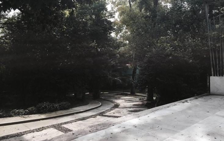 Foto de terreno comercial en renta en  , san angel, ?lvaro obreg?n, distrito federal, 1661247 No. 03
