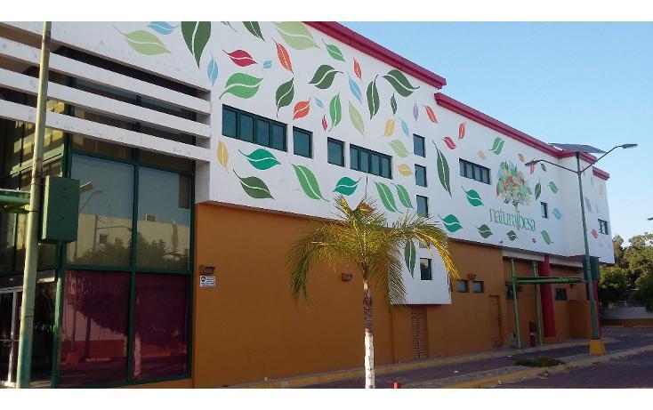 Foto de edificio en renta en  , san angel, mazatlán, sinaloa, 1135735 No. 02
