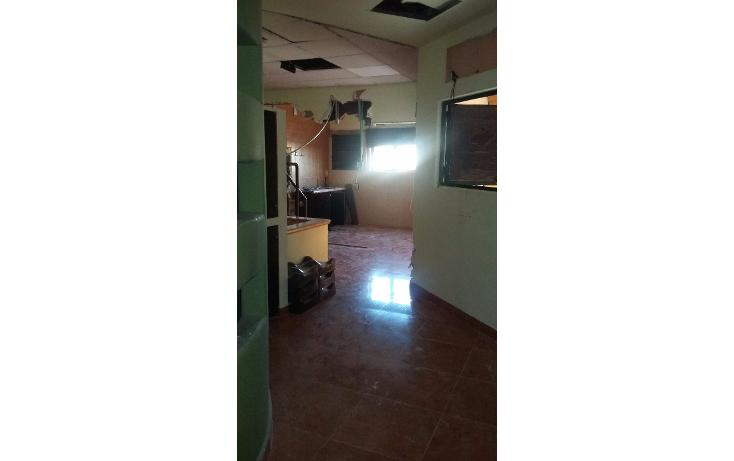 Foto de edificio en renta en  , san angel, mazatlán, sinaloa, 1135735 No. 54