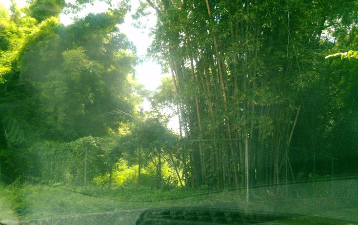 Foto de terreno habitacional en venta en  , san ant?n, cuernavaca, morelos, 1280427 No. 01