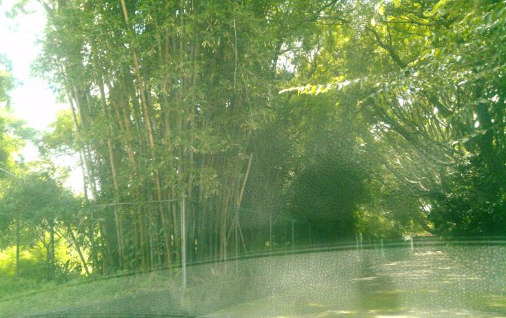 Foto de terreno habitacional en venta en  , san ant?n, cuernavaca, morelos, 1280427 No. 02
