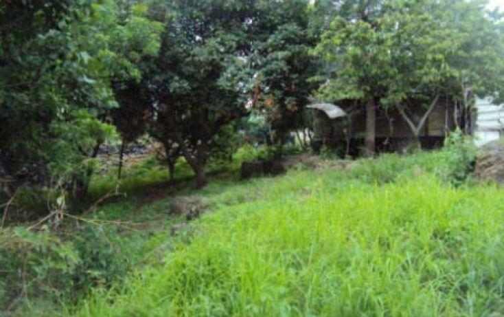Foto de terreno habitacional en venta en, san antonio, atlatlahucan, morelos, 2020761 no 02