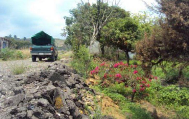 Foto de terreno habitacional en venta en, san antonio, atlatlahucan, morelos, 2020761 no 03