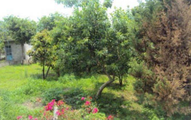 Foto de terreno habitacional en venta en, san antonio, atlatlahucan, morelos, 2020761 no 04