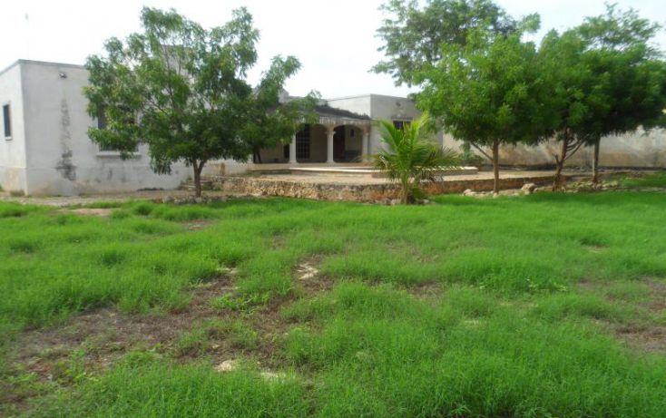 Foto de casa en venta en, san antonio cinta iii, mérida, yucatán, 1372189 no 01