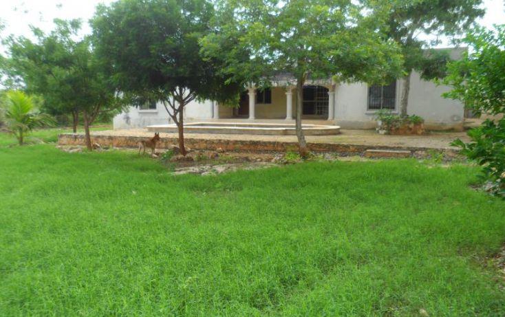 Foto de casa en venta en, san antonio cinta iii, mérida, yucatán, 1372189 no 02