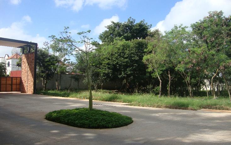 Foto de terreno habitacional en venta en  , san antonio cucul, m?rida, yucat?n, 1149385 No. 02