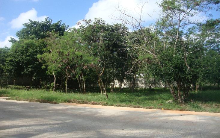 Foto de terreno habitacional en venta en  , san antonio cucul, m?rida, yucat?n, 1149385 No. 03