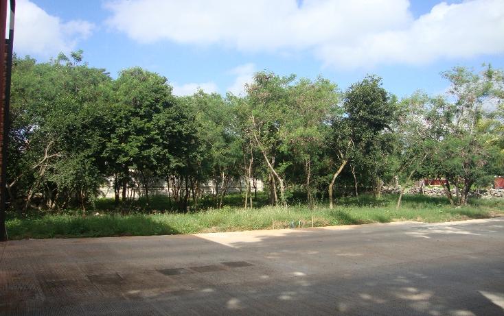 Foto de terreno habitacional en venta en  , san antonio cucul, m?rida, yucat?n, 1149385 No. 04