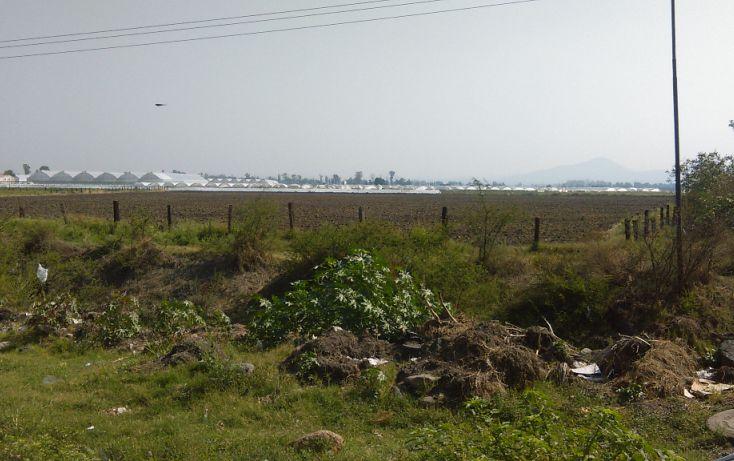 Foto de terreno comercial en venta en, san antonio de chico, irapuato, guanajuato, 2014786 no 02