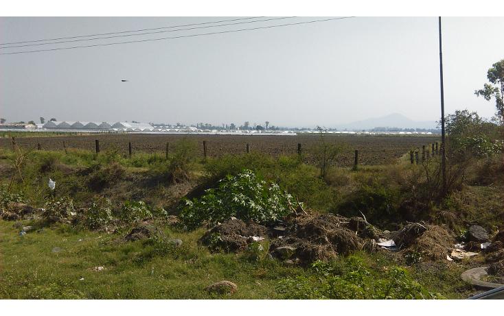 Foto de terreno comercial en venta en  , san antonio de chico, irapuato, guanajuato, 2014786 No. 02
