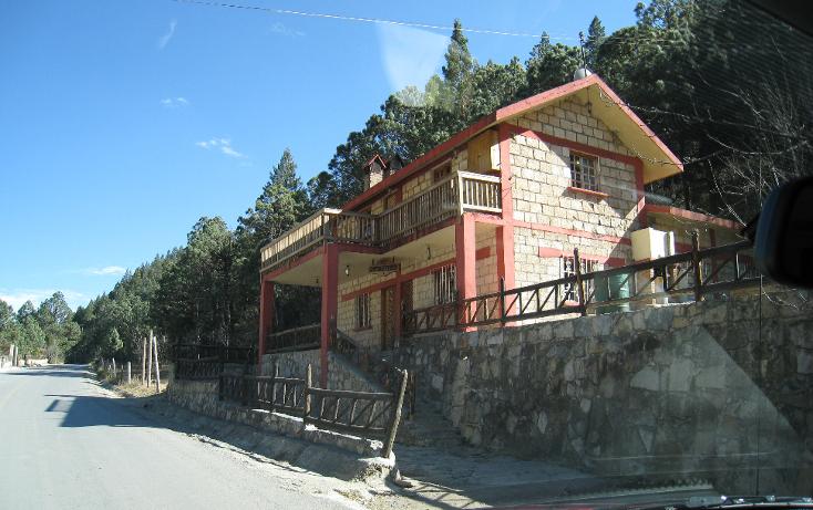 Foto de terreno habitacional en venta en  , san antonio de las alazanas, arteaga, coahuila de zaragoza, 1104891 No. 01