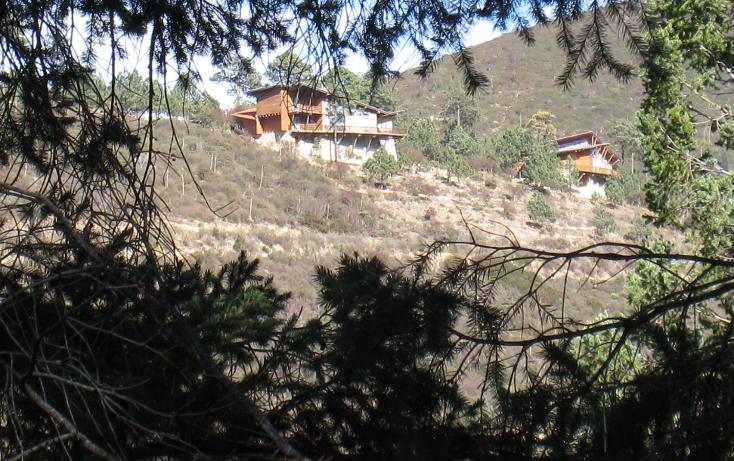 Foto de terreno habitacional en venta en  , san antonio de las alazanas, arteaga, coahuila de zaragoza, 1104891 No. 03