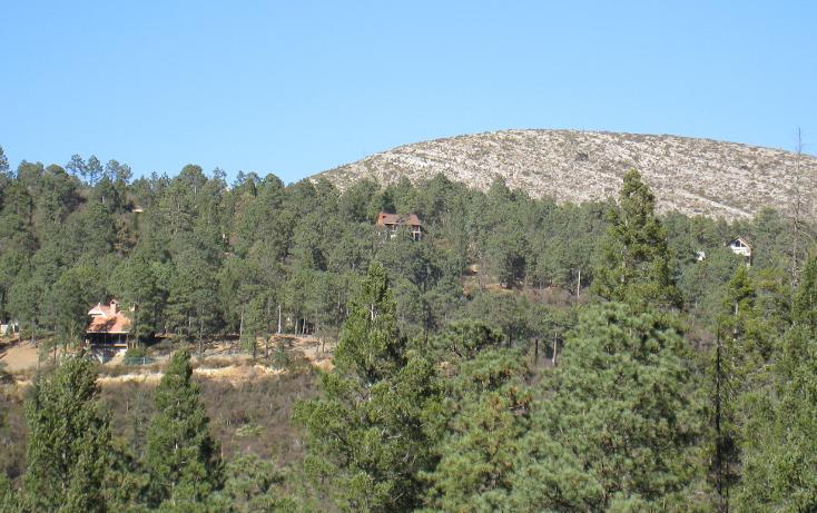 Foto de terreno habitacional en venta en  , san antonio de las alazanas, arteaga, coahuila de zaragoza, 1104891 No. 05