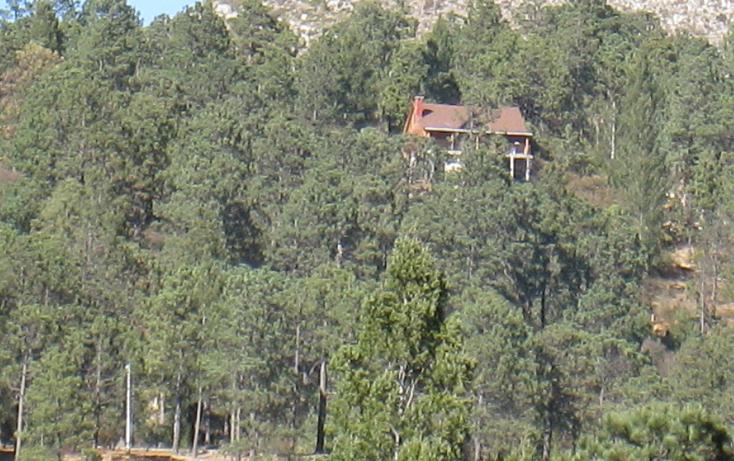 Foto de terreno habitacional en venta en  , san antonio de las alazanas, arteaga, coahuila de zaragoza, 1104891 No. 06