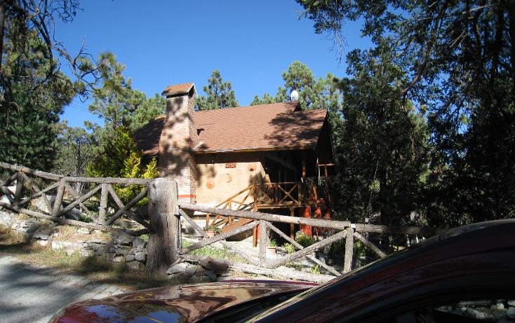 Foto de terreno habitacional en venta en  , san antonio de las alazanas, arteaga, coahuila de zaragoza, 1104891 No. 07