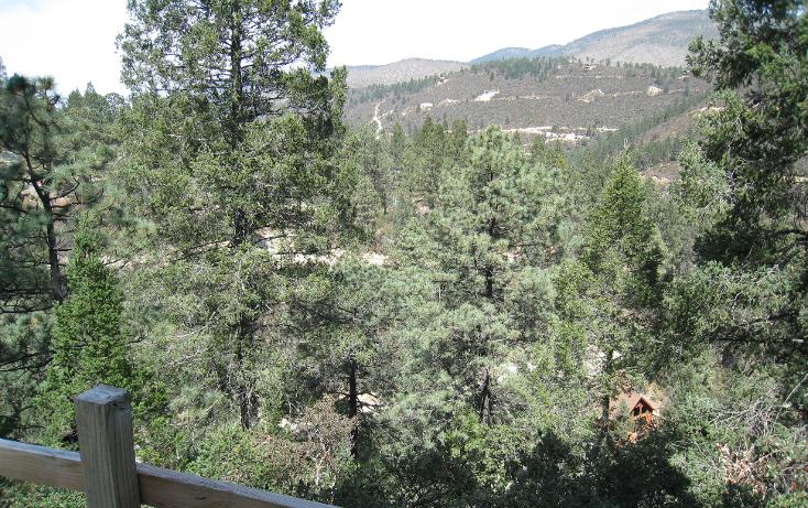 Foto de terreno habitacional en venta en  , san antonio de las alazanas, arteaga, coahuila de zaragoza, 1104891 No. 12