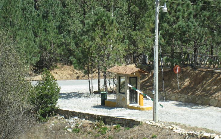 Foto de terreno habitacional en venta en  , san antonio de las alazanas, arteaga, coahuila de zaragoza, 1104891 No. 14