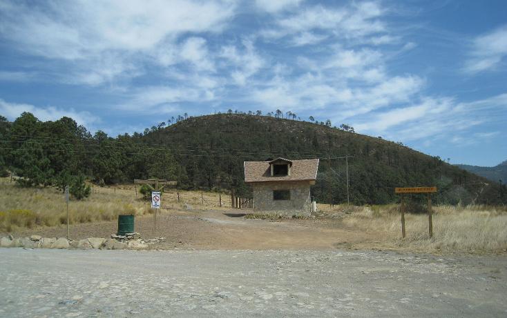 Foto de terreno habitacional en venta en  , san antonio de las alazanas, arteaga, coahuila de zaragoza, 1104891 No. 15