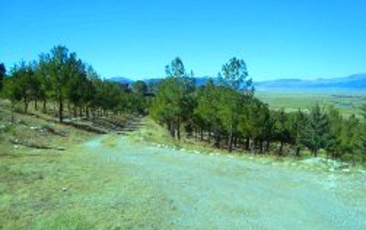 Foto de casa en venta en  , san antonio de las alazanas, arteaga, coahuila de zaragoza, 1645712 No. 05