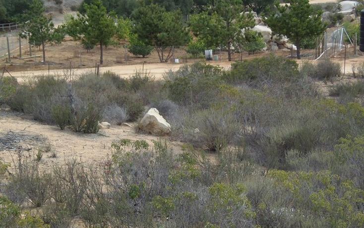 Foto de terreno habitacional en venta en  , san antonio de las minas, ensenada, baja california, 539806 No. 07