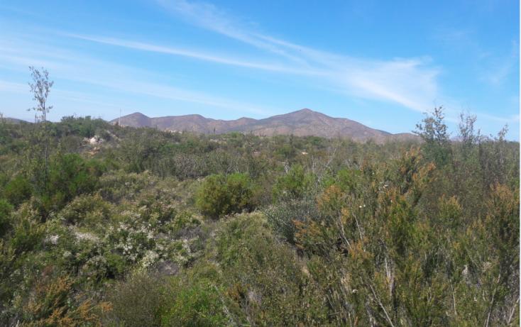 Foto de terreno habitacional en venta en, san antonio de las minas, ensenada, baja california norte, 1943427 no 01