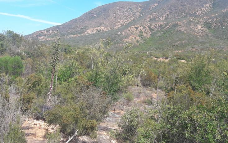 Foto de terreno habitacional en venta en, san antonio de las minas, ensenada, baja california norte, 1943427 no 02