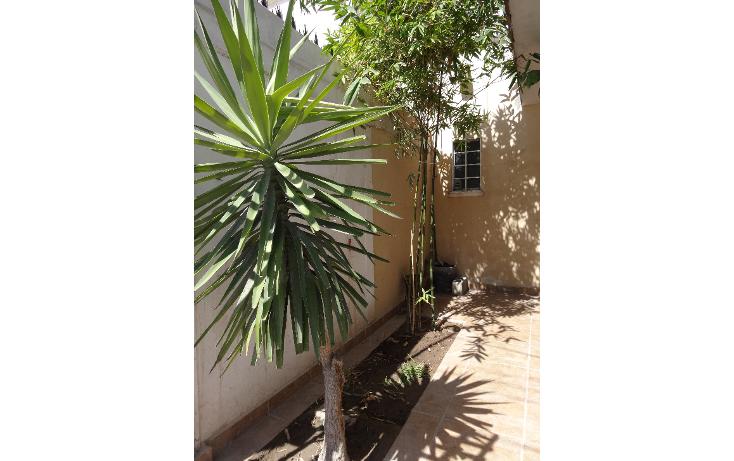 Foto de casa en venta en  , san antonio, gómez palacio, durango, 1091189 No. 13