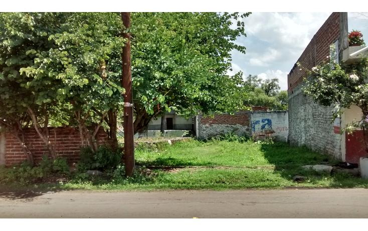 Foto de terreno habitacional en venta en  , san antonio guaracha, villamar, michoacán de ocampo, 2042148 No. 01