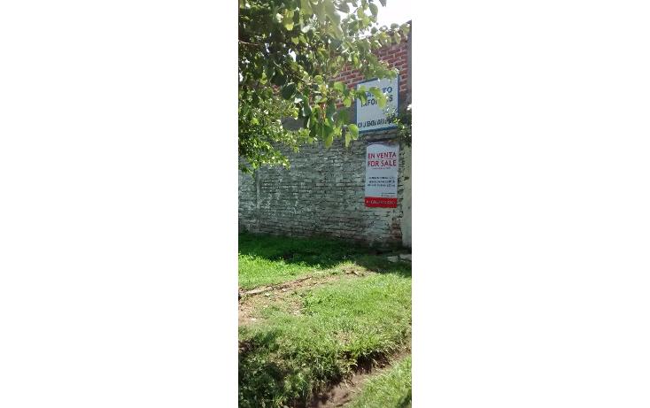 Foto de terreno habitacional en venta en  , san antonio guaracha, villamar, michoacán de ocampo, 2042148 No. 02