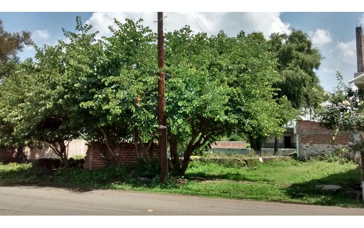 Foto de terreno habitacional en venta en  , san antonio guaracha, villamar, michoacán de ocampo, 2042148 No. 03