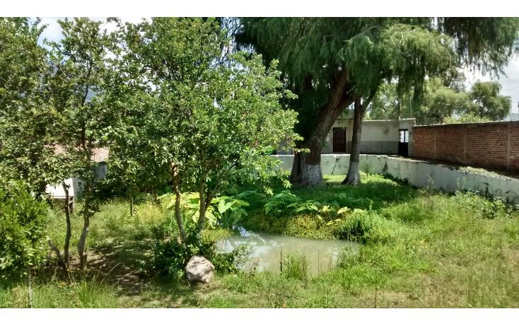 Foto de terreno habitacional en venta en  , san antonio guaracha, villamar, michoacán de ocampo, 2042148 No. 06
