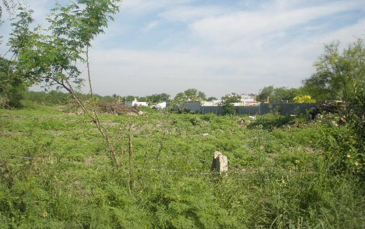 Foto de terreno habitacional en venta en  , san antonio, juárez, nuevo león, 1102577 No. 06