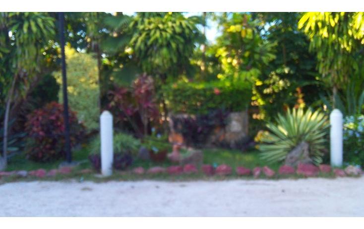 Foto de rancho en renta en  , san antonio kaua iii, kanasín, yucatán, 1495829 No. 23