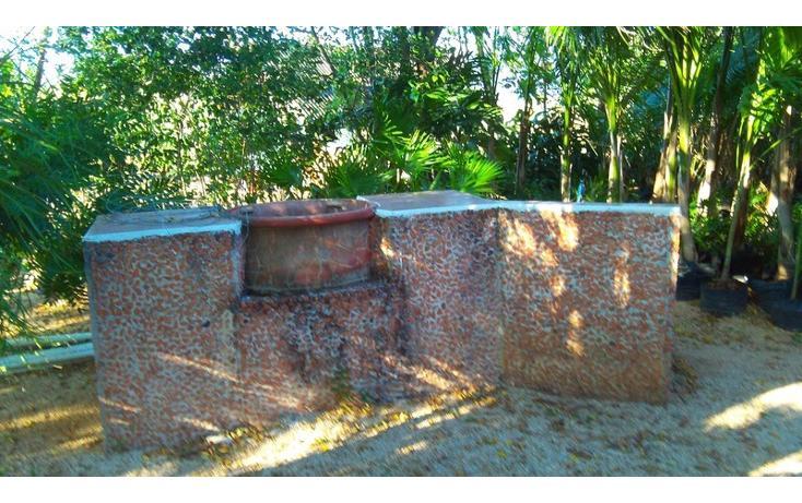 Foto de rancho en renta en  , san antonio kaua iii, kanasín, yucatán, 1495829 No. 30