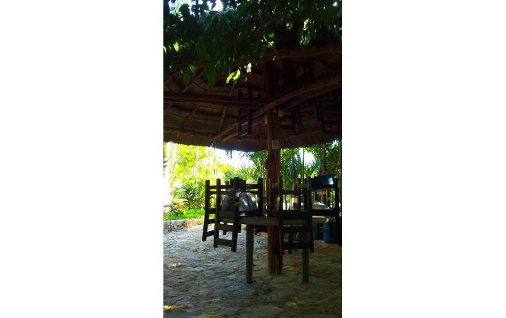 Foto de rancho en renta en  , san antonio kaua iii, kanasín, yucatán, 1495829 No. 31