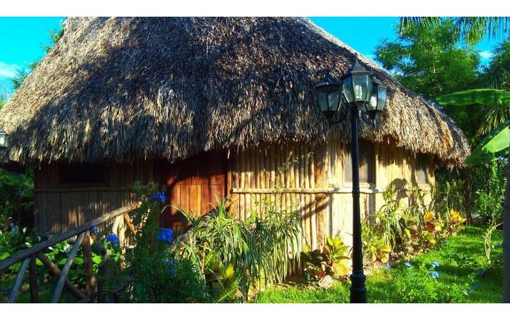 Foto de rancho en renta en  , san antonio kaua iii, kanasín, yucatán, 1495829 No. 35