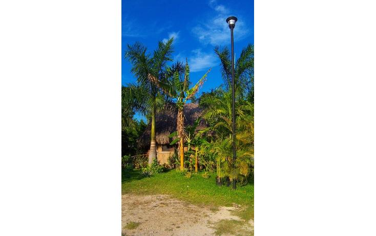 Foto de rancho en renta en  , san antonio kaua iii, kanasín, yucatán, 1495829 No. 37