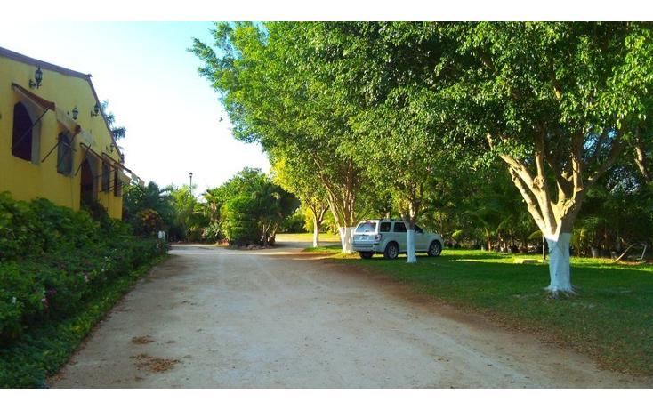 Foto de rancho en renta en  , san antonio kaua iii, kanasín, yucatán, 1495829 No. 40