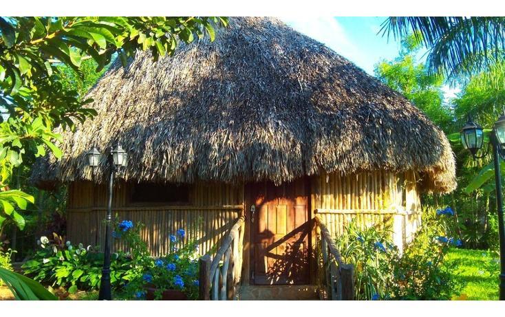 Foto de rancho en venta en  , san antonio kaua iii, kanasín, yucatán, 448178 No. 33