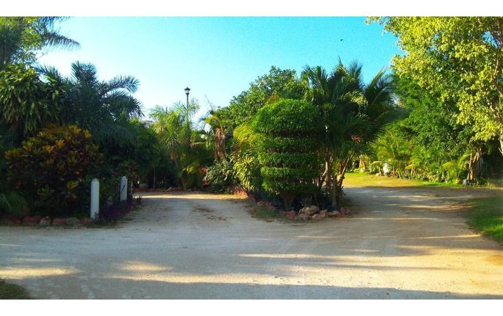 Foto de rancho en venta en  , san antonio kaua iii, kanasín, yucatán, 448178 No. 38