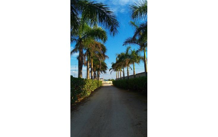 Foto de rancho en venta en  , san antonio kaua iii, kanasín, yucatán, 448178 No. 42