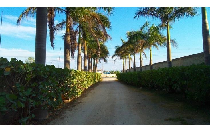 Foto de rancho en venta en  , san antonio kaua iii, kanasín, yucatán, 448178 No. 43
