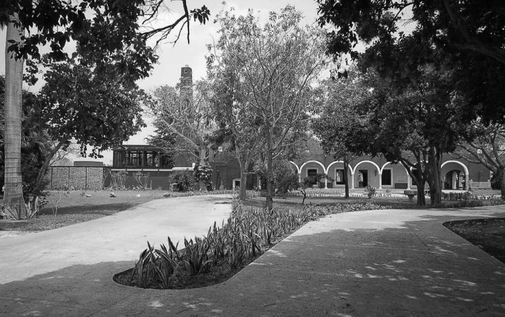 Foto de terreno habitacional en venta en  , san antonio, mérida, yucatán, 1560960 No. 03
