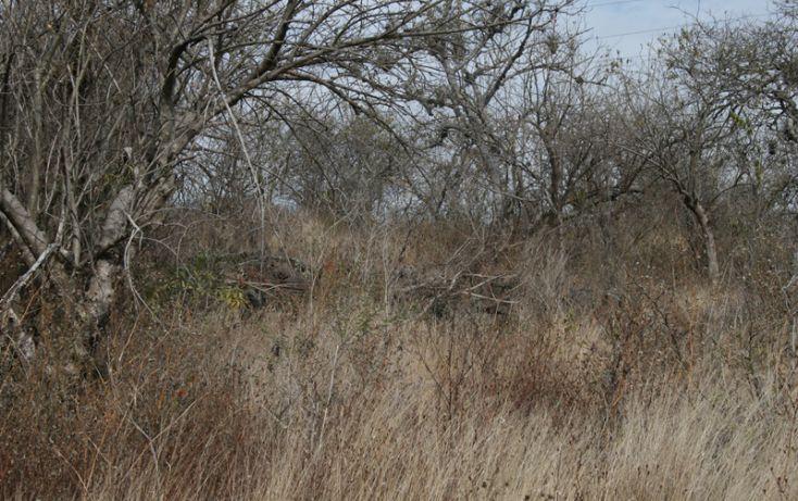 Foto de terreno habitacional en venta en, san antonio parangare, morelia, michoacán de ocampo, 1599492 no 06